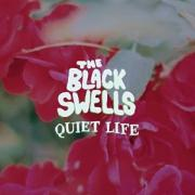 The Black Swells / Debut LP Live Launch / 12/May/17 ...